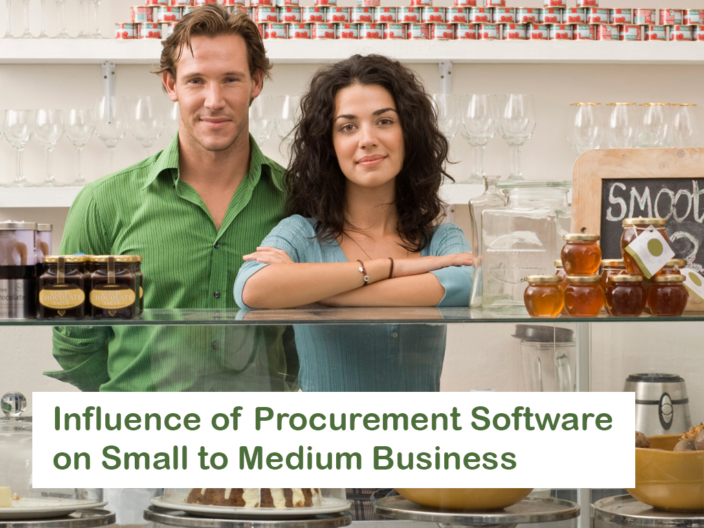 Influence of Procurement Software on Small to Medium Business
