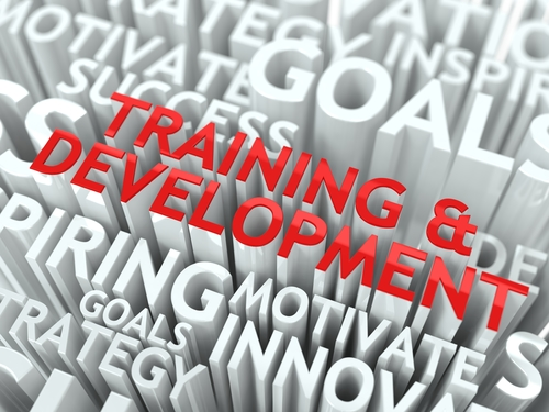 Procurement Training for the Public Sector